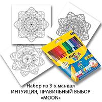 Комплект для дзен-рисования «Легкий старт» с фломастерами «BIC» 12 шт. Набор для творчества для взрослых. «MOON». Интуиция и правильный выбор, Розмарин