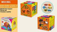 Развивающая игрушка Куб D1901