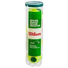 Мяч для большого тенниса WILSON STARTER PLAY GREEN