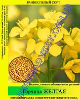 Семена горчица Желтая 25 кг (мешок)