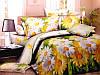Комплект постельного белья №пл178 Двойной