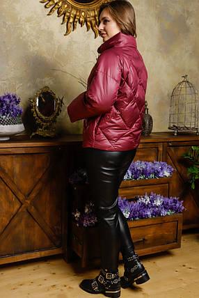 Молодежная демисезонная куртка (р. 42-50) арт. Рубина марсала, фото 2