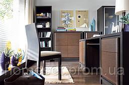 Модульный домашний офис Арека