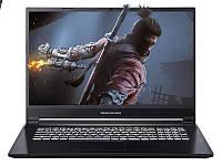 Ноутбук Dream Machines G1650-17 (G1650-17UA27) (447907)