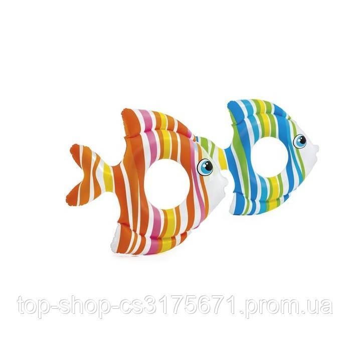 Надувной круг Рыбка 59223 Intex