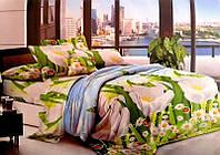 Набор постельного белья №пл165 Евростандарт, фото 1