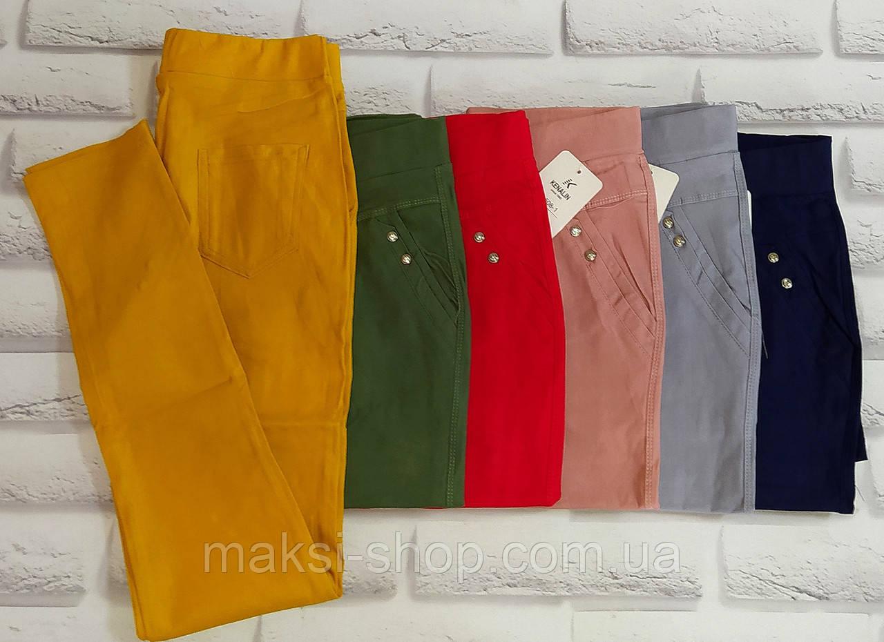 Лосины женские брюки стрейч весна лето 48-50 раз (508-1)