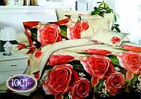 Комплект постельного белья №пл154 Двойной, фото 1