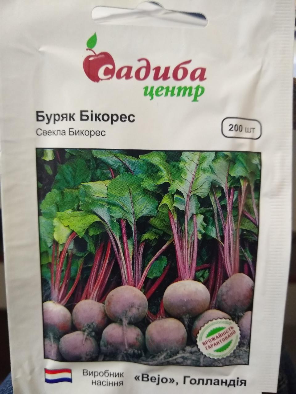 """Семена познеспелой столовой свеклы Бикорес для хранения, 200 семян,""""Bejo"""", Голландия"""