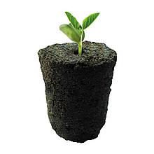 Root!t Органический спонж для проращивания и клонов