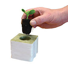 Root!t Органический спонж для проращивания и клонов, фото 2
