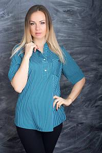 Женская полосатая блузка большого размера 52-56 р