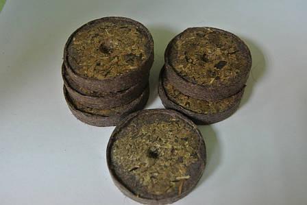 Торфяные таблетки Ellepress ø36мм, фото 2