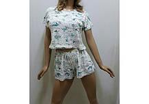 Пижамка с шортами и футболкой, размеры от 42 до 50, фото 3