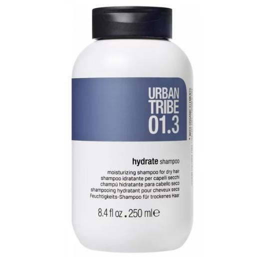 Увлажняющий Шампунь для Сухих Волос Urban Tribe 01.3 Shampoo Hydrate 250 мл