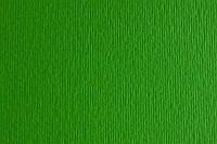 Бумага д/дизайна EIIe Erre A4 №11 verde , 220г/м2, Зеленый, Fabriano