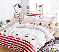 Двуспальный комплект постельного белья с Котами, Ранфорс