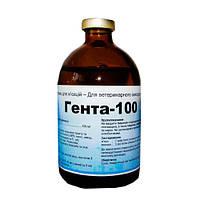 Гента-100  инъекционный  100 мл Interchemie
