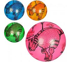 Мяч детский MS 1009