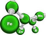 Основний вплив елементів мінерального живлення на урожай та його якість.