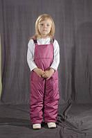 Детский демисезонный полукомбинезон Фиолетовый
