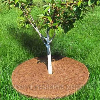 Приствольный кокосовый круг (диаметр до 40 см)