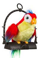 Попугай повторюшка FOD2028