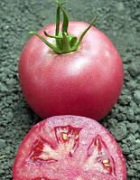 Томат Pink Unicum F1 (Пинк Уникум F1) - Seminis (Семинис), уп. 500 семян (индетерминантный)