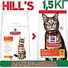 Корм Хіллс Адалт Чікен Hills Adult Care Chicken для дорослих котів з куркою 1.5 кг