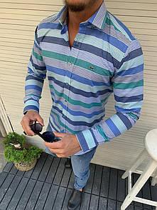 Чоловіча сорочка в смужку Lacoste,Blue