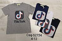 Футболка для мальчиков Tik Tok Seagull оптом, 4-12 лет. Артикул: CSQ52724