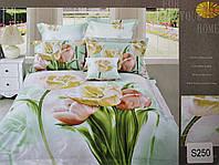 Сатиновое постельное белье евро 3D ELWAY S250