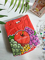Кофта рост Fruit of the loom B01J44HOD8 116cm 2 шт в упаковке Fruit of the loom