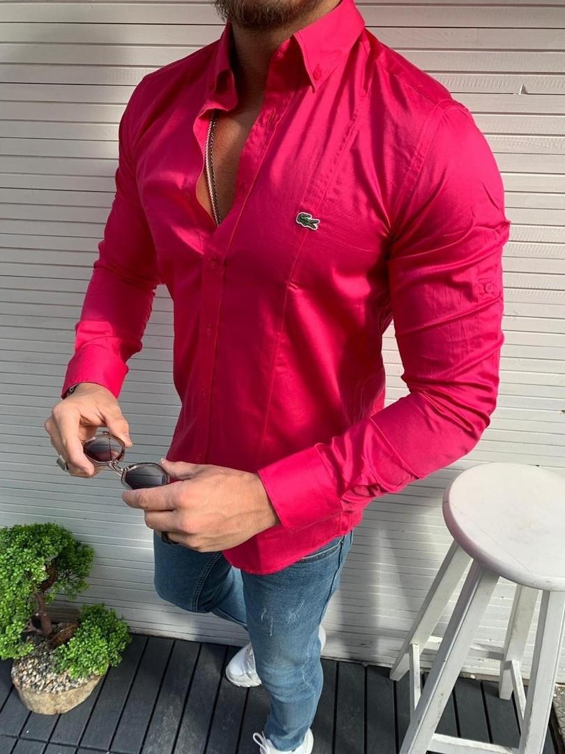 Рубашка мужская,Lacoste,малиновая