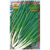 Семена лука Батун 0,5 г (Насіння країни)