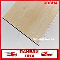 Панель ПВХ (пластиковая) Сосна (Д-04) 250х6000х8 мм.