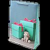 Пакет подарочный 39*27*10 см.