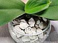 Субстрат для орхідей, Піноскло - 50л, фото 2