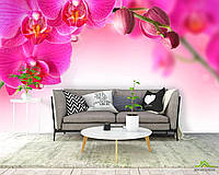 Фотообои Веточка орхидей розовых