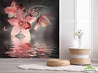 Фотообои Цветок с бабочкой