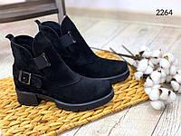 ХИТ ПРОДАЖ!! Ботинки женские. Натуральный замш. Весна-2020. Арт.2264, фото 1