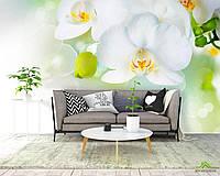 Фотообои Орхидеи в цвету