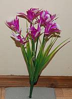 Т-77 Дикая орхидея в осоке 7 веток  30х5 см
