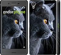 Пластиковый чехол Endorphone на Sony Xperia X F5122 Красивый кот 3038m-446-26985, КОД: 1390802