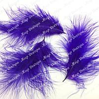Перья короткие, фиолетовые, 6-8 см