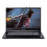Ноутбук Dream Machines G1650-17 (G1650-17UA28) Black