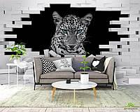 3д фотообои Леопард
