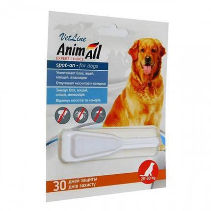 Капли AnimAll VetLine Spot-On от блох и клещей для собак весом 20-30 кг, фото 2