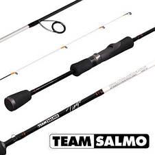 Спінінг Team Salmo TIOGA ROCKFISH 2.31 м, 2-8 м рибальські спінінгові вудилища на риболовлю штекерне, фото 2