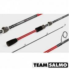 Спінінг Team Salmo VANTAGE 2.31 м, 5-14 м рибальські спінінгові вудилища на риболовлю штекерне, фото 2